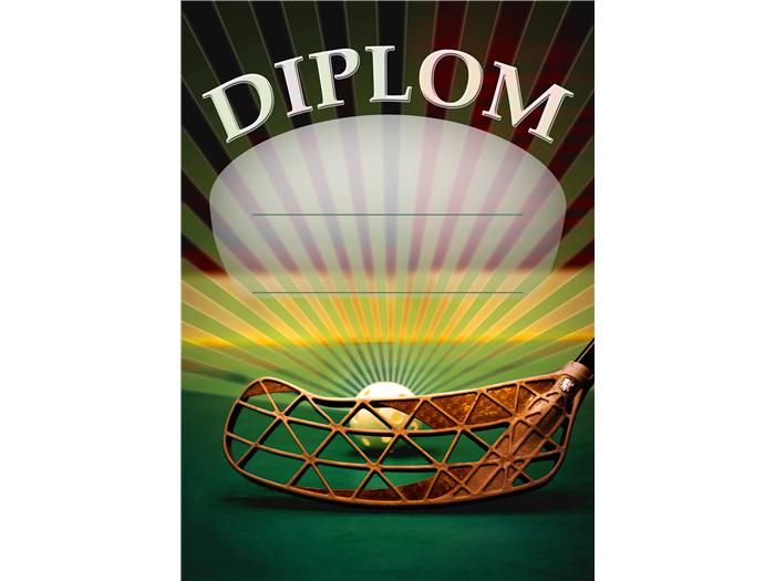 Diplom - Floorball D 29